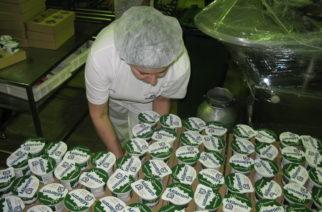 Šabačka mlekara prodata za 950 miliona dinara